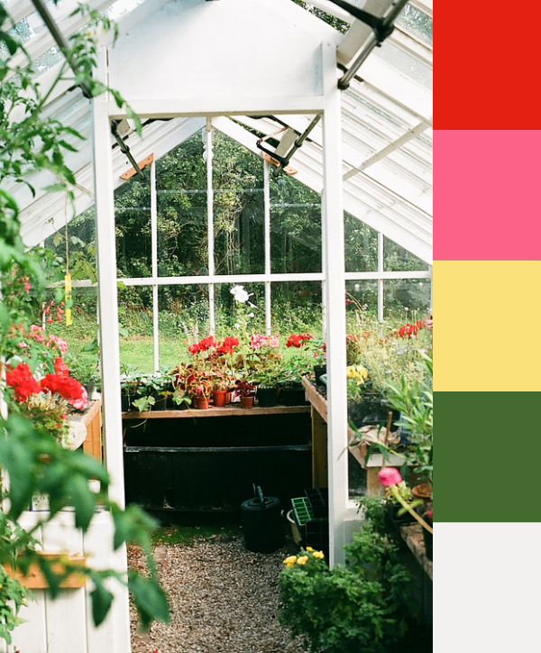 Daydream-In-Color-Color-Palette-Spring-Greenhouse