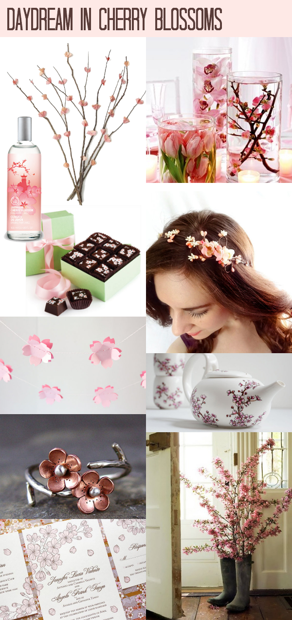 Daydream-In-Color-Daydream-In-Cherry-Blossoms