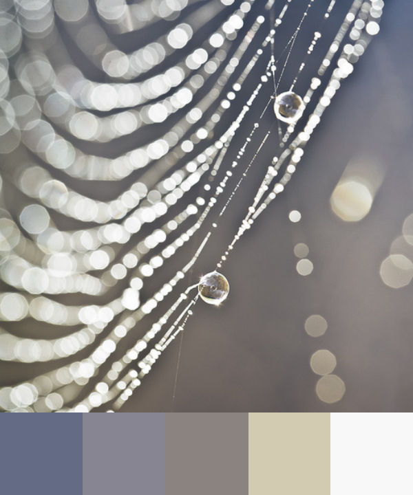 Daydream-In-Color-Color-Palette-Morning-Web