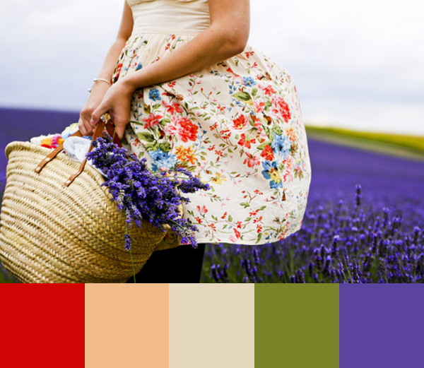 Daydream-In-Color-Color-Palette-Lavender-Picking